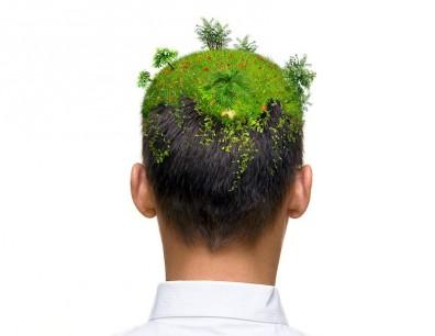 Consultoria TI Verde